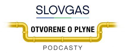 Súčasná ekonomická kríza ukáže venergetike význam zemného plynu